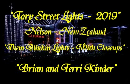 Tory Street Lights (NZ) - Them Blinkin Lights by Brian and Terri Kinder