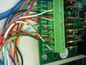 davidavd DC24 Terminal Wiring.jpg